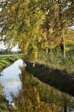2013-11-09 Mooi herftsplaatje nabij Kasteel Dorth Foto Inge Jansen