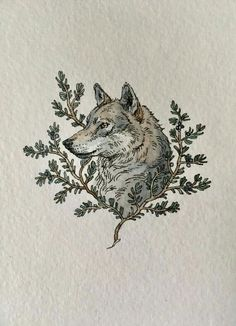 Grey Wolf and Juniper Branch Painting Lily Seika Jones Animal Drawings, Art Drawings, Wolf Illustration, Arte Sketchbook, Watercolor And Ink, Aesthetic Art, Art Inspo, Painting & Drawing, Art Reference