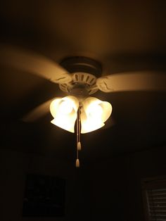 Fans at Alcove Apts. Electrical Safety, Ceiling Fans, Alcove, This Or That Questions, Free, Ceiling Fan