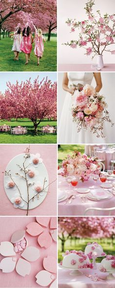 Wedding Spring Theme Cherry Blossoms Center Pieces 33 Best Ideas - New Site Wedding Color Schemes, Wedding Colors, Wedding Flowers, Floral Wedding, Cherry Blossom Party, Cherry Blossoms, Cherry Blossom Bouquet, Cherry Blossom Centerpiece, Flower Centerpieces