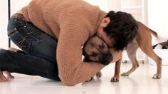 Battersea Dogs & Cats Home; Ambassador David Gandy,**-**