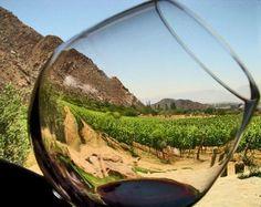 Ruta del Vino y Queso por Tequisquiapan