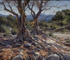 """""""Twin Sycamores"""" (SOLD) by Matt Smith Oil ~ 18 x 22"""