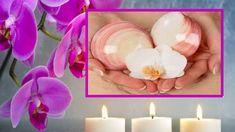 Massage domicile: 10 raisons de succomber au massage aux coquillages... Muscle Soreness, Sea Shells, Athlete