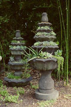 succulents in fountain #succulent #container #garden
