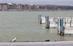 Genève hiver