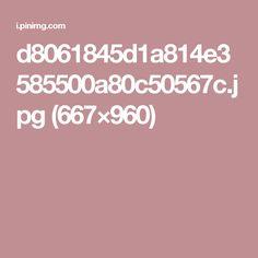 d8061845d1a814e3585500a80c50567c.jpg (667×960)