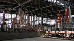 St. George Spirits | Atlas Obscura Absinthe distillery