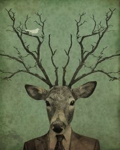 Leroy's Antlers, Kevin Lucius