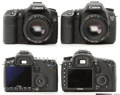 Canon EOS 7D and 50 D