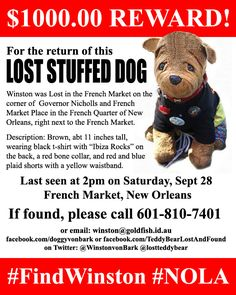 LOST $1000 REWARD!! Find Winston! Brown, stuffed, toy dog Lost in the French Market, New Orleans, Sept 28 #lost #stuffed #toy #dog #FindWinston #NOLA Contact: winston@goldfish.id.au or https://www.facebook.com/TeddyBearLostAndFound