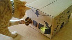 Para gatos inteligentes, faça um brinquedo inteligente