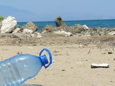 Plastic Bottle Bottle Beach Sea Pollu