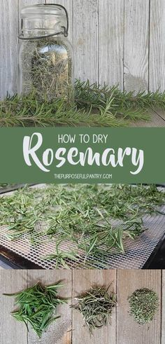 How to dry rosemary - here are detailed step by step directions to walk you through the whole process! Rosemary Plant, How To Dry Rosemary, How To Dry Oregano, Lavender Flowers, Herb Recipes, Canning Recipes, Provident Living, Dehydrator Recipes