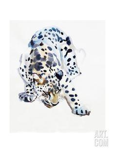 Arabian Leopard, 2008 Giclee Print by Mark Adlington at Art.com