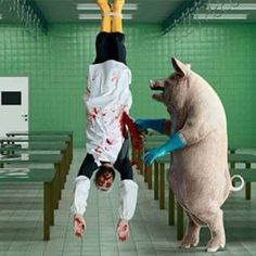 in a parallel universe how ethical is this? #vegan