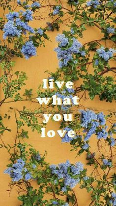 GOOISCH ⍟ quotes ⍟ inspiratie ⍟ live what you love ⍟ wallpaper ⍟ background ⍟ positive vibes ⍟ note to self Tumblr Wallpaper, Of Wallpaper, Screen Wallpaper, Wallpaper Quotes, Wallpaper Backgrounds, Travel Wallpaper, Phone Backgrounds, Collage Mural, Photo Wall Collage