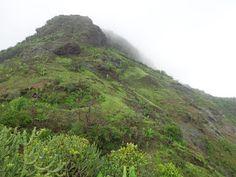 Trekking Forts : Kamandurg Fort Trek Thorny Bushes, Dense Fog, Types Of Insects, Water Spots, Rainy Season, Forts, The Rock, Trekking