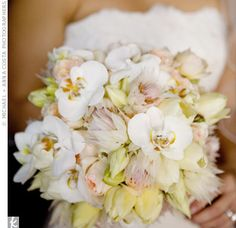 bouquet of ivory French tulips, soft pink garden roses, pink Blushing Bride protea and white cattleya orchids. Bride Flowers, Bride Bouquets, Wedding Flowers, Greenery Bouquets, Protea Wedding, Pink Garden, Garden Roses, Pink Bouquet, White Orchids