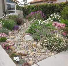 Rock Garden A rock garden can be an attractive alternative to a grass lawn. This one has a rock streambed as the centerpiece, with low-water perennials flanking and overflowing its sides. The garden's natural look offers a lot of color and visual interest.