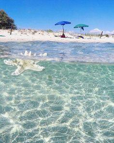 Località Mugoni (Alghero) . Sabbia bianca e mare cristallino. Sardinia-Cerdeña-Sardegna-Sardinien