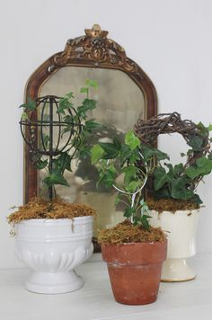 Ivy topiaries at placemichel.etsy.com
