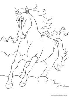 Die 31 Besten Bilder Von Ausmalbilder Pferde
