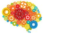 Challenge your mind to learn new things by reading, taking up a language, doing crossword puzzles, or playing a musical instrument. Challenging your mind can help keep the brain and information processing in top form and may even reshape brain circuitry.