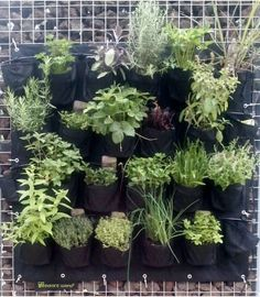 recycle-verticale-tuin