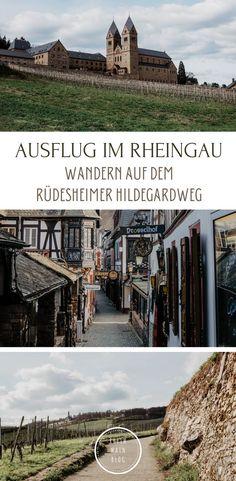 Auslug im Rheingau - Wandern auf dem Rüdesheimer Hildegardweg - Rhein-Main-Blog Frankfurt, Maine, Rhein Main Gebiet, Hiking, Posts, Blog, Travel, Europe, Nature Activities