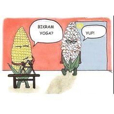 #repost from @yoga_digest lol  #bikram