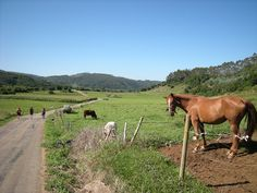 camino de santiago Camino del Norte by FreeCat, via Flickr
