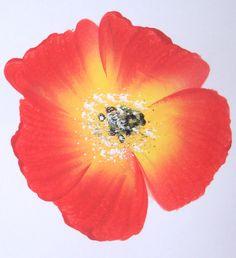 Tutoriel Peinture facile : les bases (Tableaux home déco) - Femme2decoTV