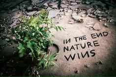 Alla fine a vincere è la Natura