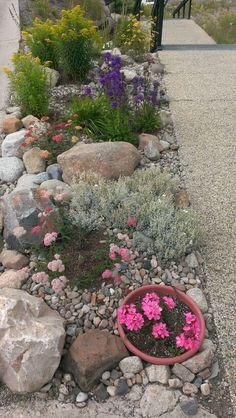 Garden rock wall diy backyard ideas 17 ideas for 2019 Patio Garden, Garden Design, Succulents Garden, Backyard Landscaping, Rock Garden Design, Backyard Garden, Outdoor Gardens, Rock Garden, Garden Stones