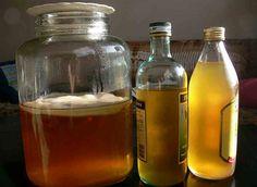 Homemade Kombucha Tea Recipe