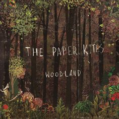 ▶ The Paper Kites - Bloom (Official Music Video) - YouTube