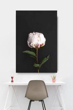 Flower Print Botanical Art Peony Art Flower Photography