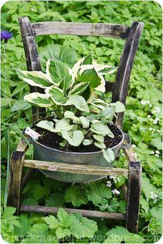 Perennials, bucket and chair!