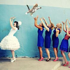 From brides throwing cats, to dinosaurs chasing wedding parties, these are the best wedding Photoshop memes around. (Photo: Brian Aulick)