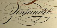 Burgues Script by Alejandro Paul - Find font at http://www.myfonts.com/fonts/sudtipos/burgues-script/