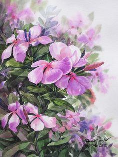 Acrylic Painting Flowers, Watercolor Flowers, Watercolor Paintings, Periwinkle Flowers, Pastel Flowers, Floral Drawing, Indian Art Paintings, Botanical Art, Beautiful Paintings