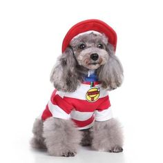 S-Lifeeling Christmas Baby (With Hat) Dog Costumes Holiday Halloween Christmas Pet Clothes Soft Comfortable Dog Clothes * You can find out more details at the link of the image. (This is an affiliate link) Baby Dogs, Pet Dogs, Dogs And Puppies, Dog Cat, Dog Lover Gifts, Dog Lovers, Costume Chien, Chat Halloween, Christmas Puppy