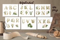 White Roses – Vector Alphabets Set by Yuliya Art on @creativemarket