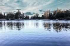 Darker Mood, Water Reflection