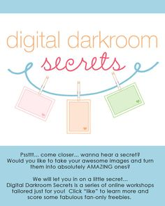 Digital Darkroom Secrets Online Post-Processing Workshops will take your images to the next level!