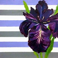 """""""Iris""""  - one of my favorites.  This one is sold!"""
