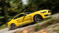 2016 Ford Mustang Shelby GT-350R - 2016 Road and Track Performance Car of the Year