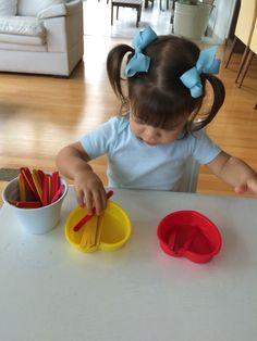 Separando os palitos por cor. Atividade montessoriana.