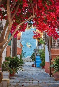 """greek-highlights: """" Kokari village… Samos ialand,Greece photo by P.Machairas """" I love pictures of beautiful Greece. Dream Vacations, Vacation Spots, Vacation Packages, Italy Vacation, Vacation Villas, Vacation Rentals, Places To Travel, Places To See, Wonderful Places"""